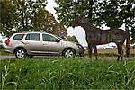 Dacia-Logan MCV 2014 img-35