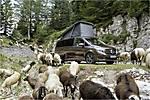 Mercedes-Benz-Marco Polo 2015 img-13