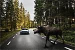 Volvo-V90 Cross Country 2017 img-48